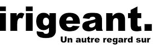 Projet Eternesia sur Dirigeant.fr